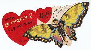300px-Butterfly_Valentine